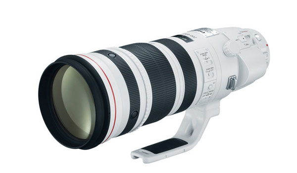Canon 200-400mm F4 L IS USM
